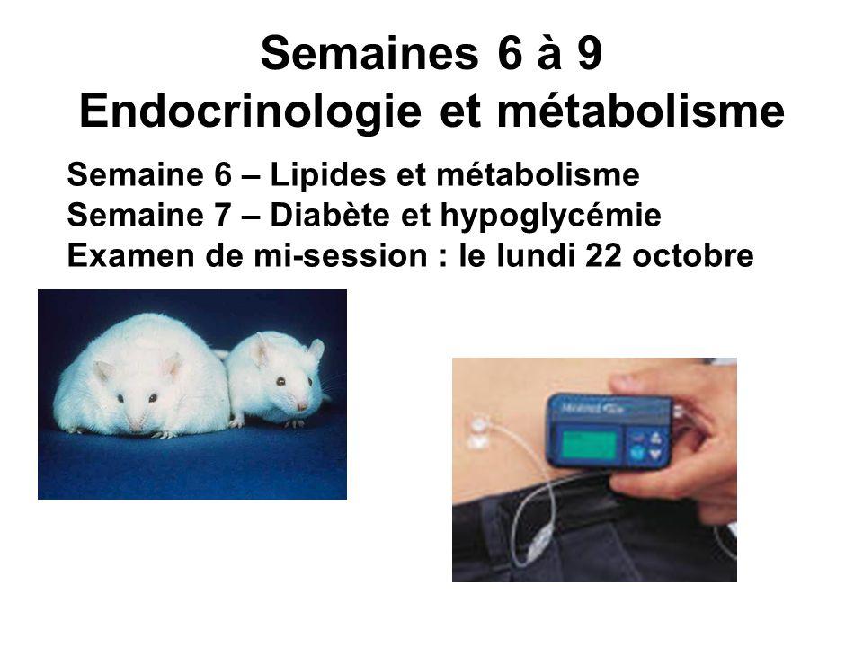 Semaines 6 à 9 Endocrinologie et métabolisme Semaine 6 – Lipides et métabolisme Semaine 7 – Diabète et hypoglycémie Examen de mi-session : le lundi 22