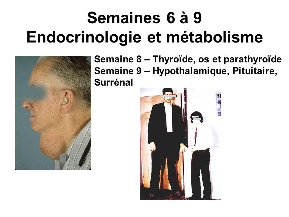 Semaines 6 à 9 Endocrinologie et métabolisme Semaine 8 – Thyroïde, os et parathyroïde Semaine 9 – Hypothalamique, Pituitaire, Surrénal