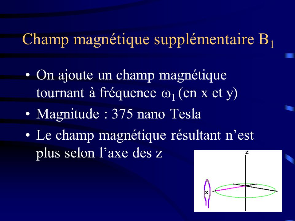 Champ magnétique supplémentaire B 1 On ajoute un champ magnétique tournant à fréquence ω 1 (en x et y) Magnitude : 375 nano Tesla Le champ magnétique