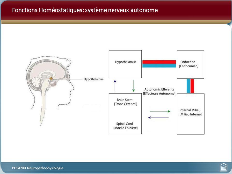 Fonctions Homéostatiques: système nerveux autonome PHS4700 Neuropathophysiologie
