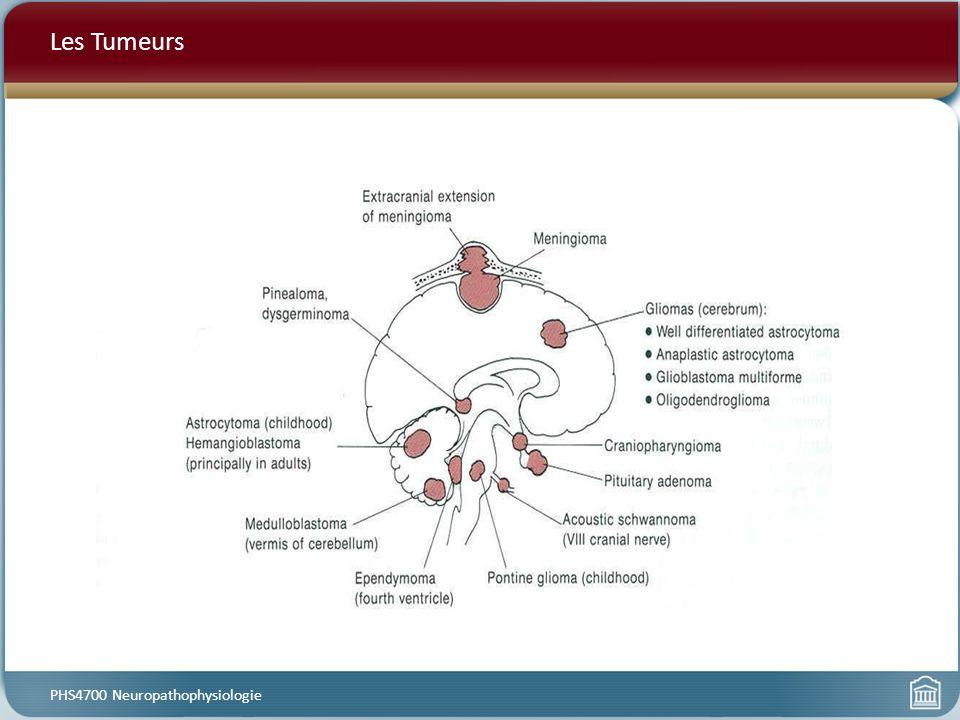 Les Tumeurs PHS4700 Neuropathophysiologie