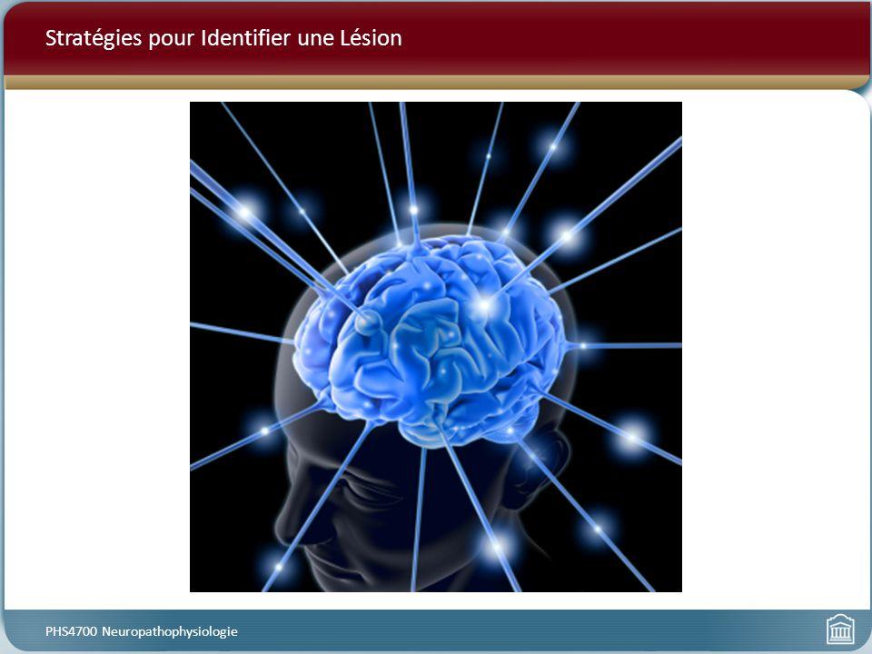 Stratégies pour Identifier une Lésion PHS4700 Neuropathophysiologie