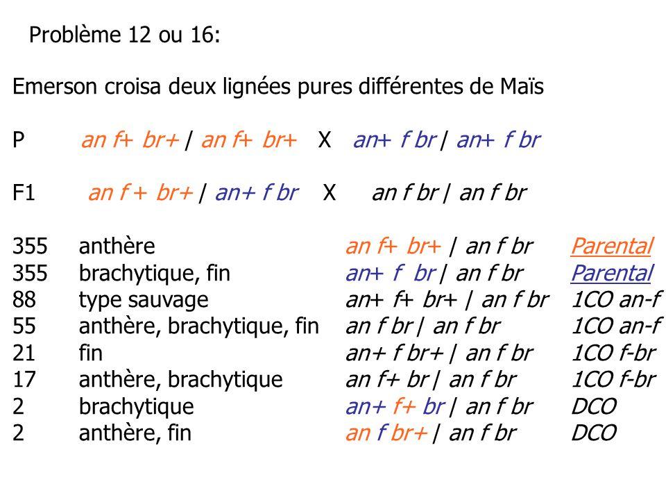 Emerson croisa deux lignées pures différentes de Maïs P an f+ br+ / an f+ br+ X an+ f br / an+ f br F1 an f + br+ / an+ f br X an f br / an f br 355an