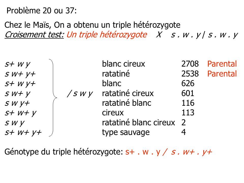 Chez le Maïs, On a obtenu un triple hétérozygote Croisement test: Un triple hétérozygote X s. w. y / s. w. y s+ w yblanc cireux2708Parental s w+ y+ ra