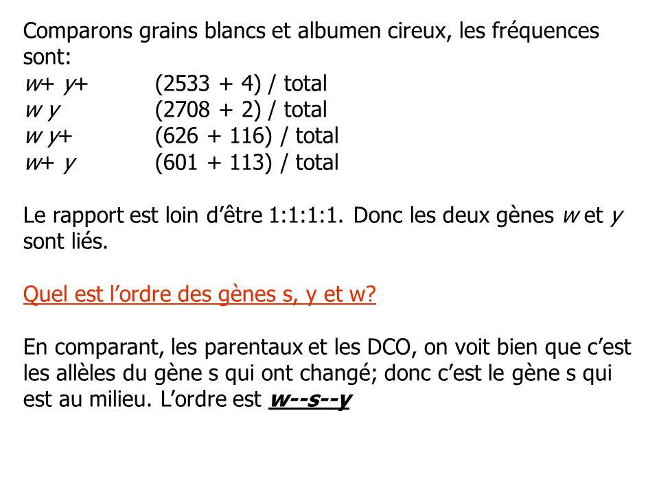 Comparons grains blancs et albumen cireux, les fréquences sont: w+ y+(2533 + 4) / total w y(2708 + 2) / total w y+(626 + 116) / total w+ y(601 + 113)
