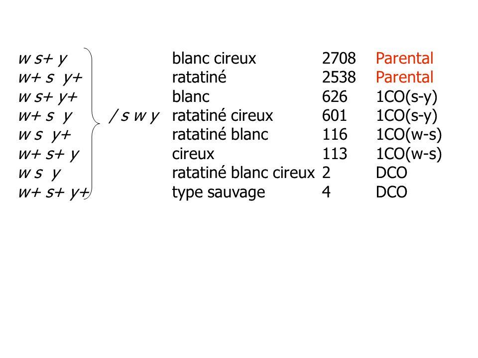 Calcul des distances: D (w-s): (113 + 116 + 4 + 2)/6708 = 0.035 = 3.5% Càd 3.5 cM D (s-y): (601 + 626 + 4 + 2)/ 6708= 0.184 = 18.4% Càd 18.4 cM wsy 3.5 cM 18.4 cM c.
