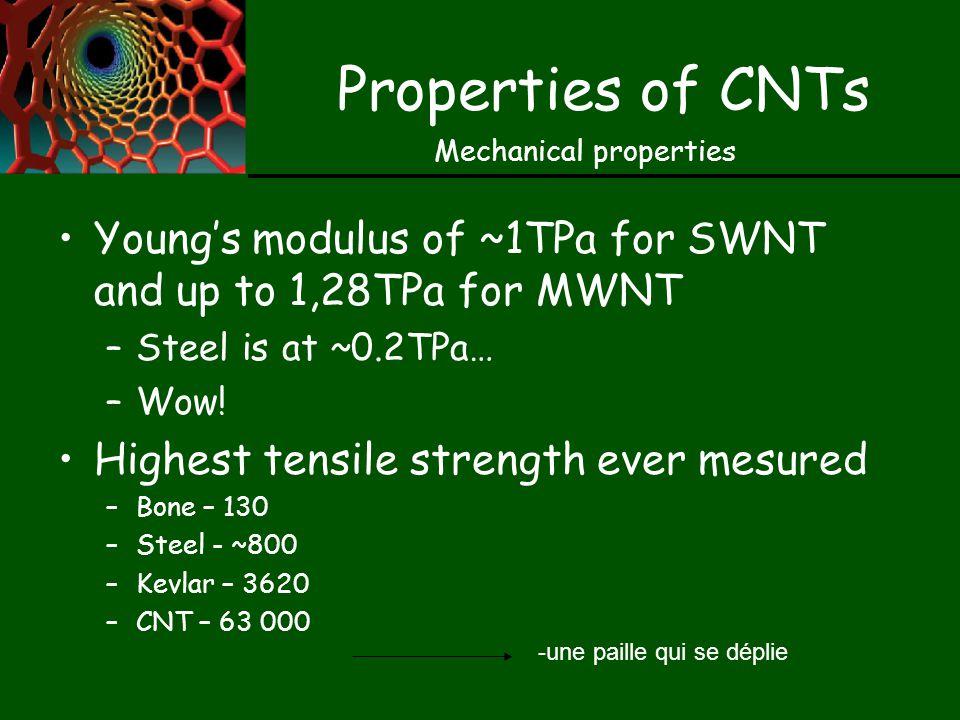 Problems with CNTs Méthode dassemblage complexes pour des «réseaux» de nanotubes Moins de problèmes avec les MWNTs Multiton production in early 1990s Hyperion Catalysis International Inc In Japan, plans for 120 ton/year of MWNT at 75$/kg (2)
