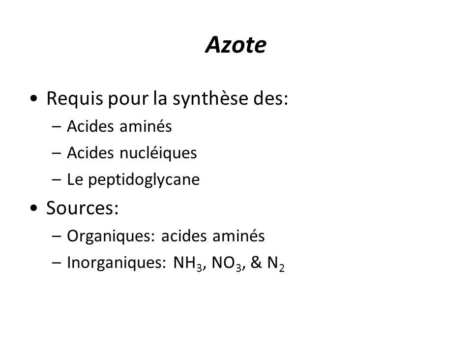Azote Requis pour la synthèse des: –Acides aminés –Acides nucléiques –Le peptidoglycane Sources: –Organiques: acides aminés –Inorganiques: NH 3, NO 3, & N 2