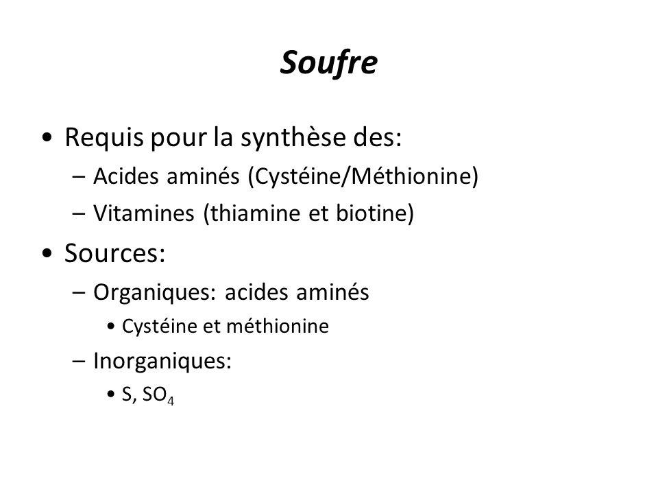 Soufre Requis pour la synthèse des: –Acides aminés (Cystéine/Méthionine) –Vitamines (thiamine et biotine) Sources: –Organiques: acides aminés Cystéine et méthionine –Inorganiques: S, SO 4