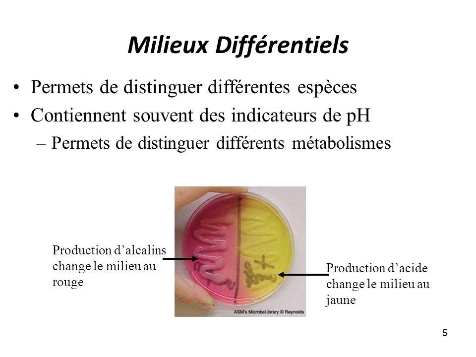 Milieux Différentiels 5 Permets de distinguer différentes espèces Contiennent souvent des indicateurs de pH –Permets de distinguer différents métabolismes Production dacide change le milieu au jaune Production dalcalins change le milieu au rouge