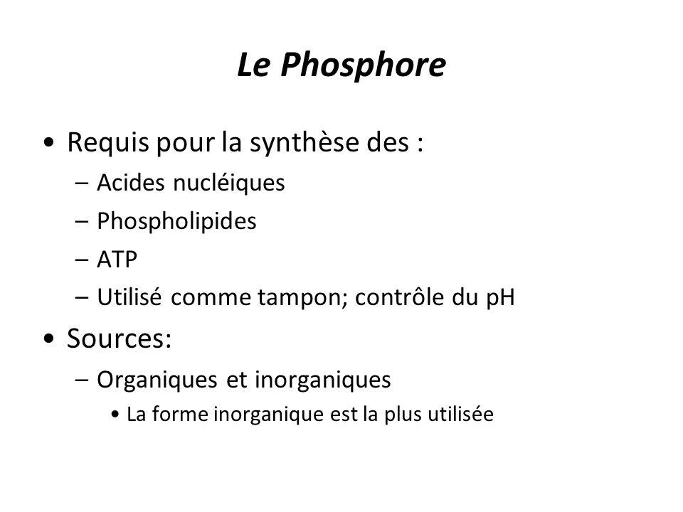 Le Phosphore Requis pour la synthèse des : –Acides nucléiques –Phospholipides –ATP –Utilisé comme tampon; contrôle du pH Sources: –Organiques et inorg