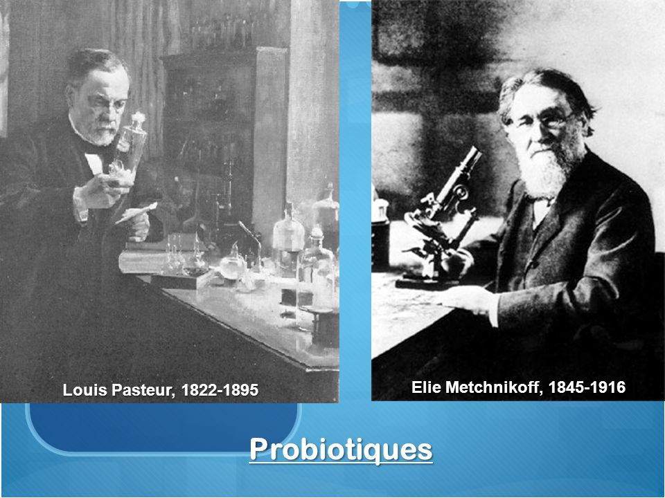 Probiotiques Elie Metchnikoff, 1845-1916 Louis Pasteur, 1822-1895