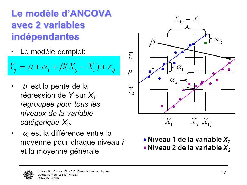 Université dOttawa - Bio 4518 - Biostatistiques appliquées © Antoine Morin et Scott Findlay 2014-06-05 09:06 17 Le modèle complet: est la pente de la régression de Y sur X 1 regroupée pour tous les niveaux de la variable catégorique X 2.
