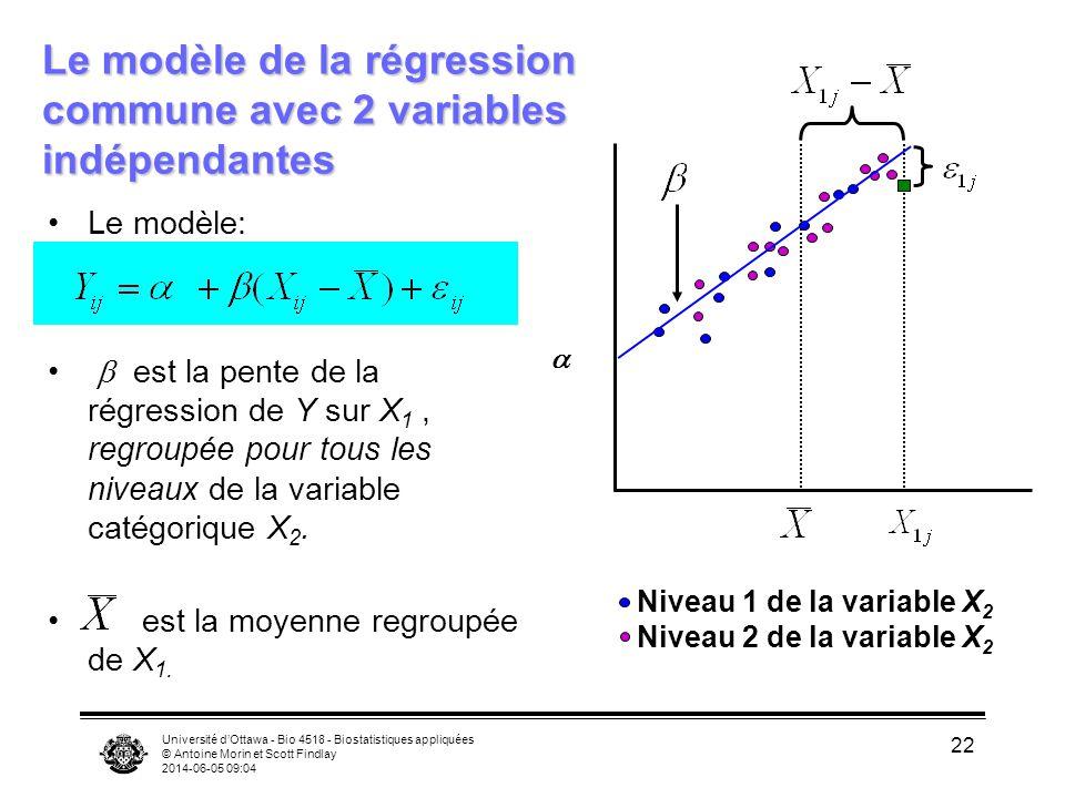 Université dOttawa - Bio 4518 - Biostatistiques appliquées © Antoine Morin et Scott Findlay 2014-06-05 09:06 22 Le modèle: est la pente de la régression de Y sur X 1, regroupée pour tous les niveaux de la variable catégorique X 2.