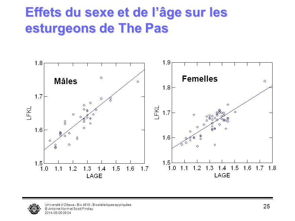 Université dOttawa - Bio 4518 - Biostatistiques appliquées © Antoine Morin et Scott Findlay 2014-06-05 09:06 25 Effets du sexe et de lâge sur les esturgeons de The Pas Mâles Femelles