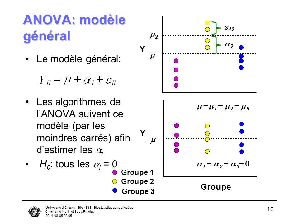 Université dOttawa - Bio 4518 - Biostatistiques appliquées © Antoine Morin et Scott Findlay 2014-06-05 09:06 10 ANOVA: modèle général Le modèle général: Les algorithmes de lANOVA suivent ce modèle (par les moindres carrés) afin destimer les i H 0 : tous les i = 0 Groupe Groupe 1 Groupe 2 Groupe 3 Y 2 2 42 Y