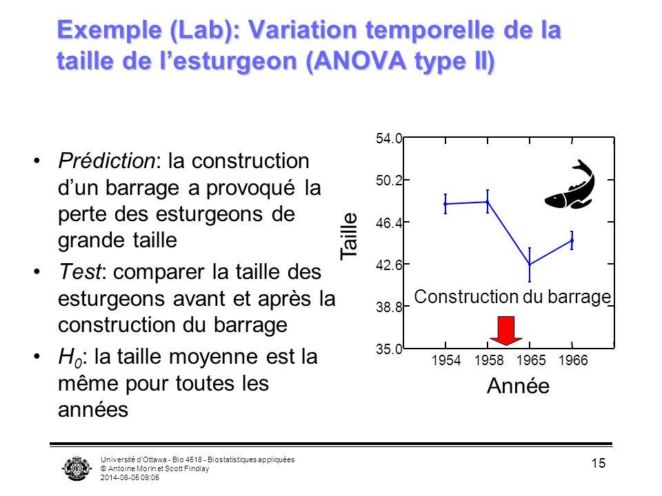 Université dOttawa - Bio 4518 - Biostatistiques appliquées © Antoine Morin et Scott Findlay 2014-06-05 09:06 15 Exemple (Lab): Variation temporelle de la taille de lesturgeon (ANOVA type II) Prédiction: la construction dun barrage a provoqué la perte des esturgeons de grande taille Test: comparer la taille des esturgeons avant et après la construction du barrage H 0 : la taille moyenne est la même pour toutes les années 1954195819651966 Année 35.0 38.8 42.6 46.4 50.2 54.0 Construction du barrage Taille