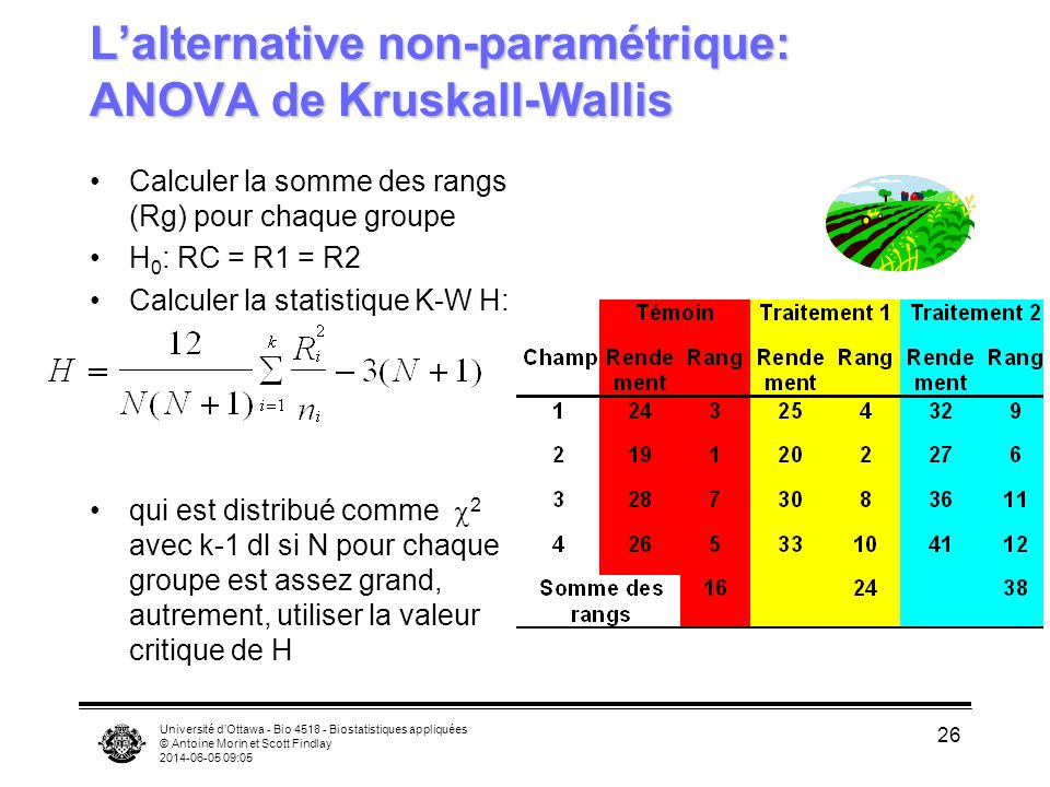 Université dOttawa - Bio 4518 - Biostatistiques appliquées © Antoine Morin et Scott Findlay 2014-06-05 09:06 26 Lalternative non-paramétrique: ANOVA de Kruskall-Wallis Calculer la somme des rangs (Rg) pour chaque groupe H 0 : RC = R1 = R2 Calculer la statistique K-W H: qui est distribué comme 2 avec k-1 dl si N pour chaque groupe est assez grand, autrement, utiliser la valeur critique de H