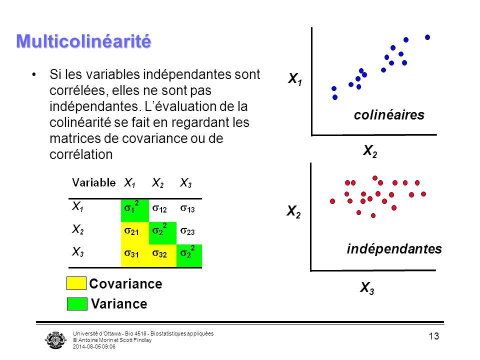 Université dOttawa - Bio 4518 - Biostatistiques appliquées © Antoine Morin et Scott Findlay 2014-06-05 09:08 13 Multicolinéarité Si les variables indépendantes sont corrélées, elles ne sont pas indépendantes.