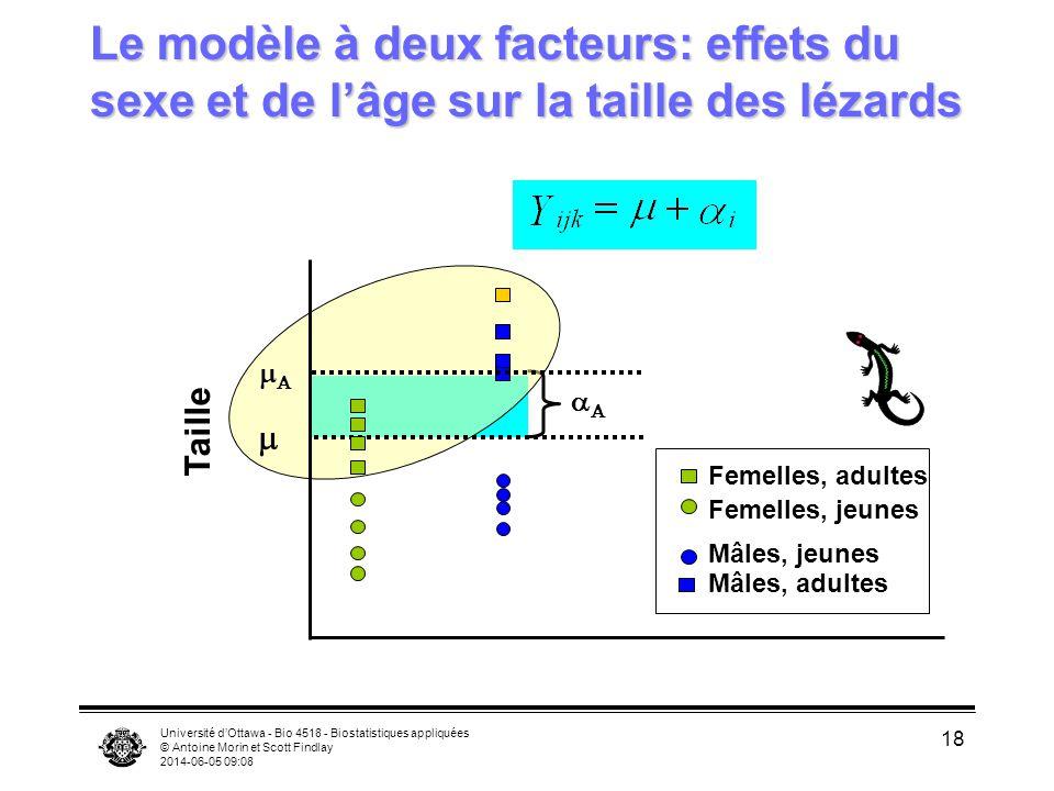 Université dOttawa - Bio 4518 - Biostatistiques appliquées © Antoine Morin et Scott Findlay 2014-06-05 09:10 18 Le modèle à deux facteurs: effets du s
