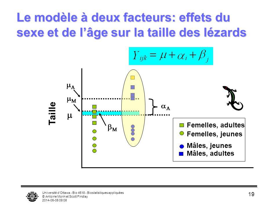 Université dOttawa - Bio 4518 - Biostatistiques appliquées © Antoine Morin et Scott Findlay 2014-06-05 09:10 19 Le modèle à deux facteurs: effets du s
