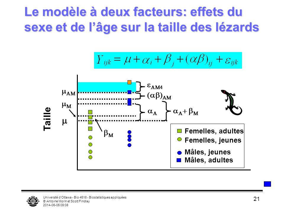 Université dOttawa - Bio 4518 - Biostatistiques appliquées © Antoine Morin et Scott Findlay 2014-06-05 09:10 21 Le modèle à deux facteurs: effets du s