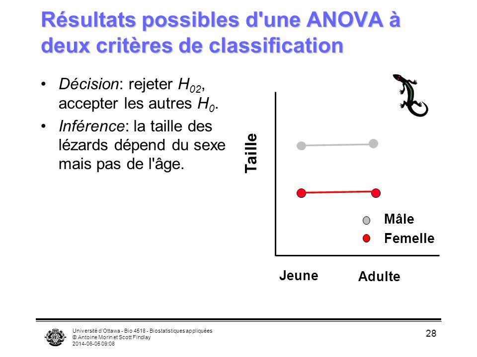 Université dOttawa - Bio 4518 - Biostatistiques appliquées © Antoine Morin et Scott Findlay 2014-06-05 09:10 28 Résultats possibles d'une ANOVA à deux
