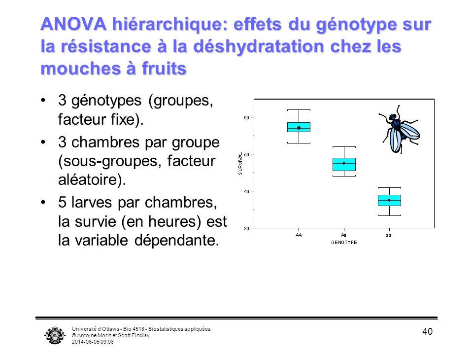 Université dOttawa - Bio 4518 - Biostatistiques appliquées © Antoine Morin et Scott Findlay 2014-06-05 09:10 40 ANOVA hiérarchique: effets du génotype