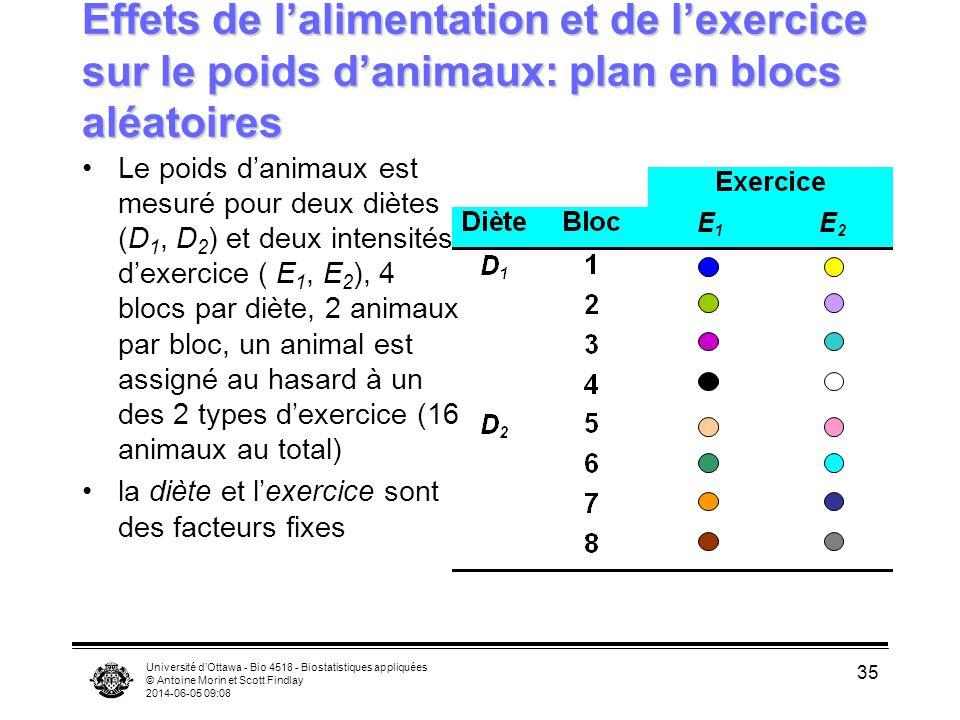 Université dOttawa - Bio 4518 - Biostatistiques appliquées © Antoine Morin et Scott Findlay 2014-06-05 09:10 35 Effets de lalimentation et de lexercice sur le poids danimaux: plan en blocs aléatoires Le poids danimaux est mesuré pour deux diètes (D 1, D 2 ) et deux intensités dexercice ( E 1, E 2 ), 4 blocs par diète, 2 animaux par bloc, un animal est assigné au hasard à un des 2 types dexercice (16 animaux au total) la diète et lexercice sont des facteurs fixes