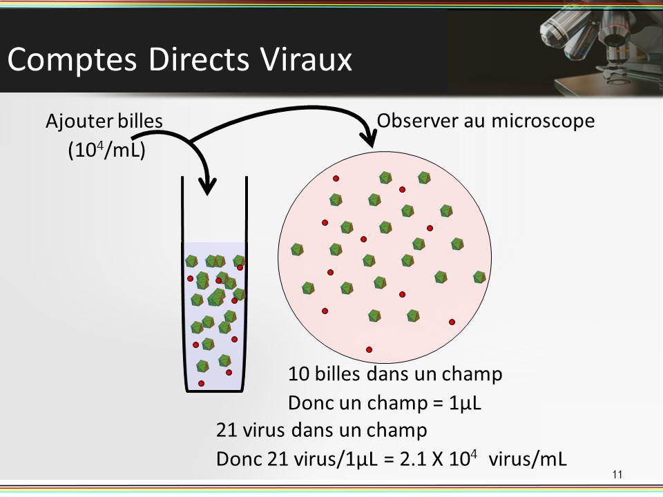Comptes Directs Viraux 11 Ajouter billes (10 4 /mL) Observer au microscope 10 billes dans un champ Donc un champ = 1µL 21 virus dans un champ Donc 21