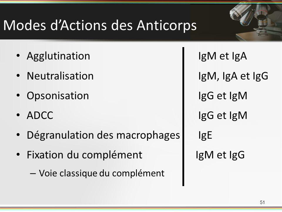 Modes dActions des Anticorps 51 Agglutination Neutralisation Opsonisation ADCC Dégranulation des macrophages Fixation du complément – Voie classique d