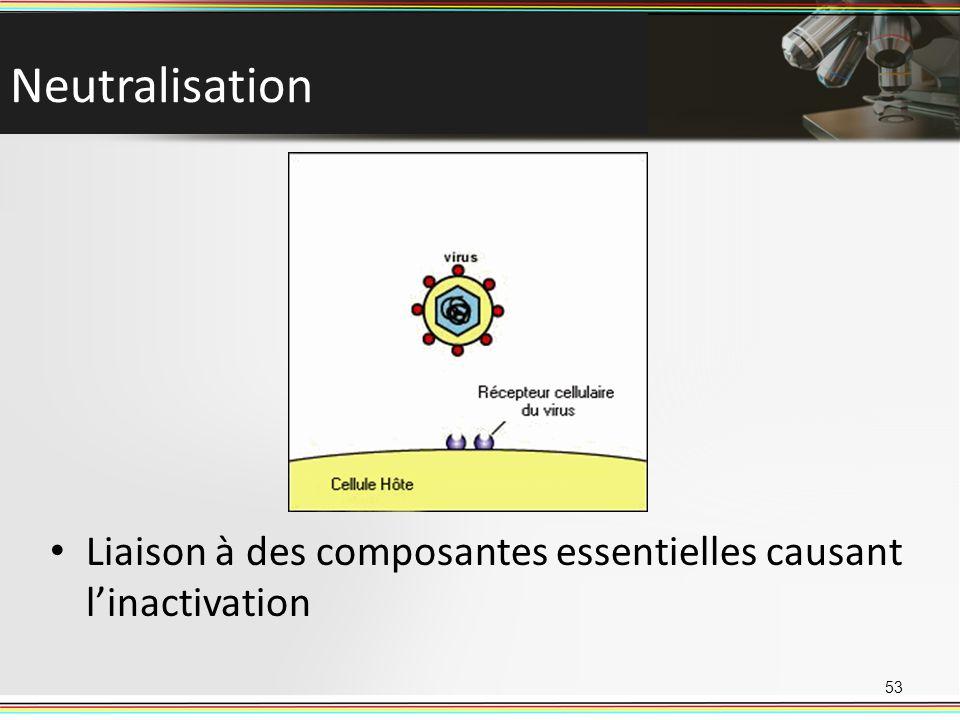 Neutralisation 53 Liaison à des composantes essentielles causant linactivation