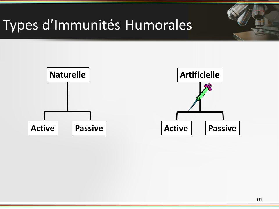 Types dImmunités Humorales 61 Naturelle ActivePassive Artificielle ActivePassive