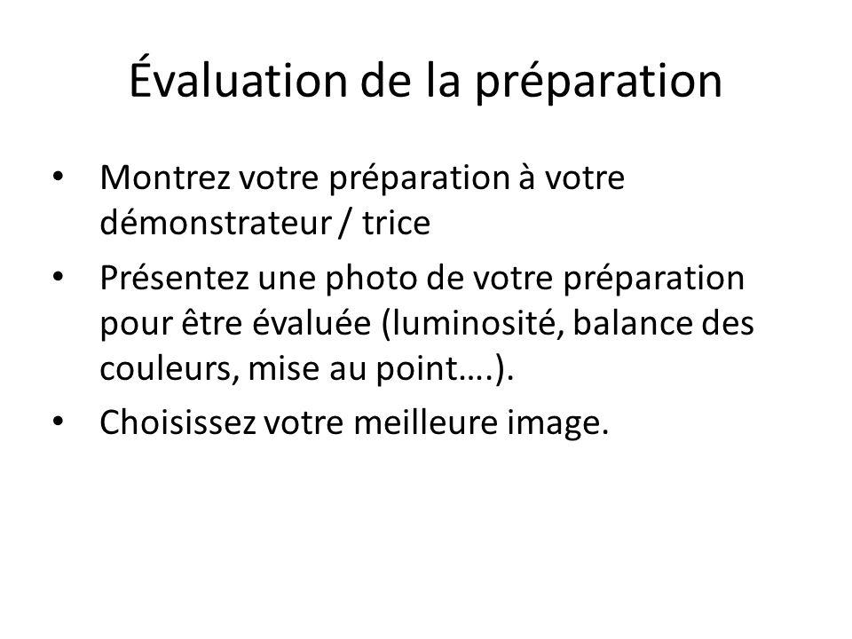 Évaluation de la préparation Montrez votre préparation à votre démonstrateur / trice Présentez une photo de votre préparation pour être évaluée (luminosité, balance des couleurs, mise au point….).