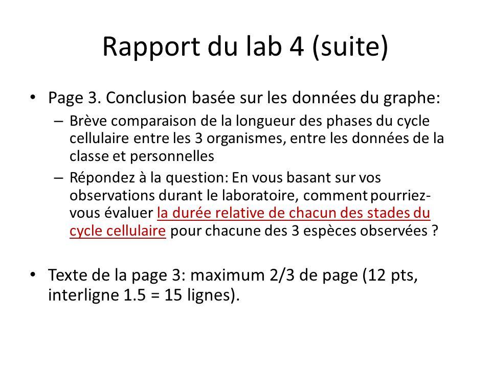 Rapport du lab 4 (suite) Page 3.