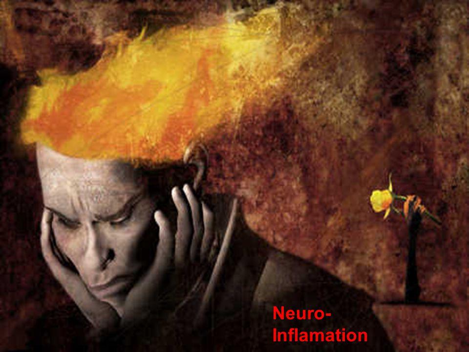 Excitotoxicité Production endogène Production endogèneAVC Traumatisme crânien Provient de lœdème, de lhypoxie Sources Sources Levures alimentaires Lécithine de soja MSG (glutamate) Asthme, migraine, allergies Syndrôme du restaurant chinois Aspartame