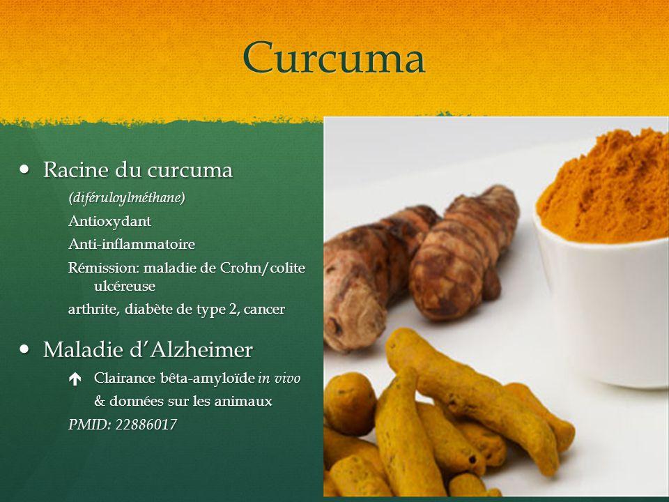 Curcuma Racine du curcuma Racine du curcuma(diféruloylméthane)AntioxydantAnti-inflammatoire Rémission: maladie de Crohn/colite ulcéreuse arthrite, dia