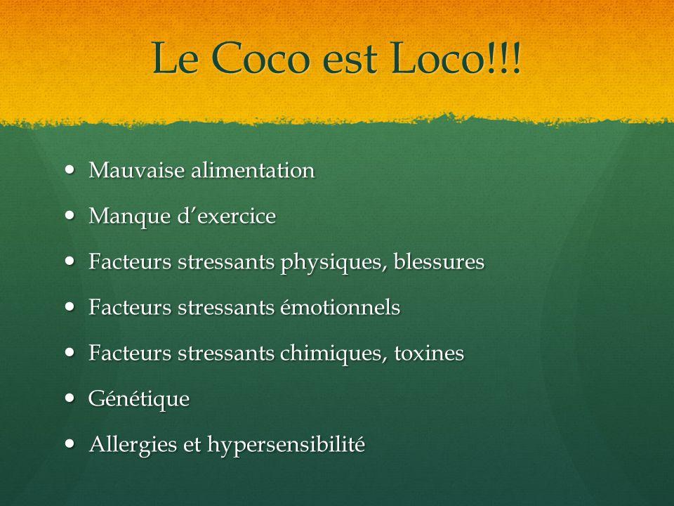 Le Coco est Loco!!! Mauvaise alimentation Mauvaise alimentation Manque dexercice Manque dexercice Facteurs stressants physiques, blessures Facteurs st