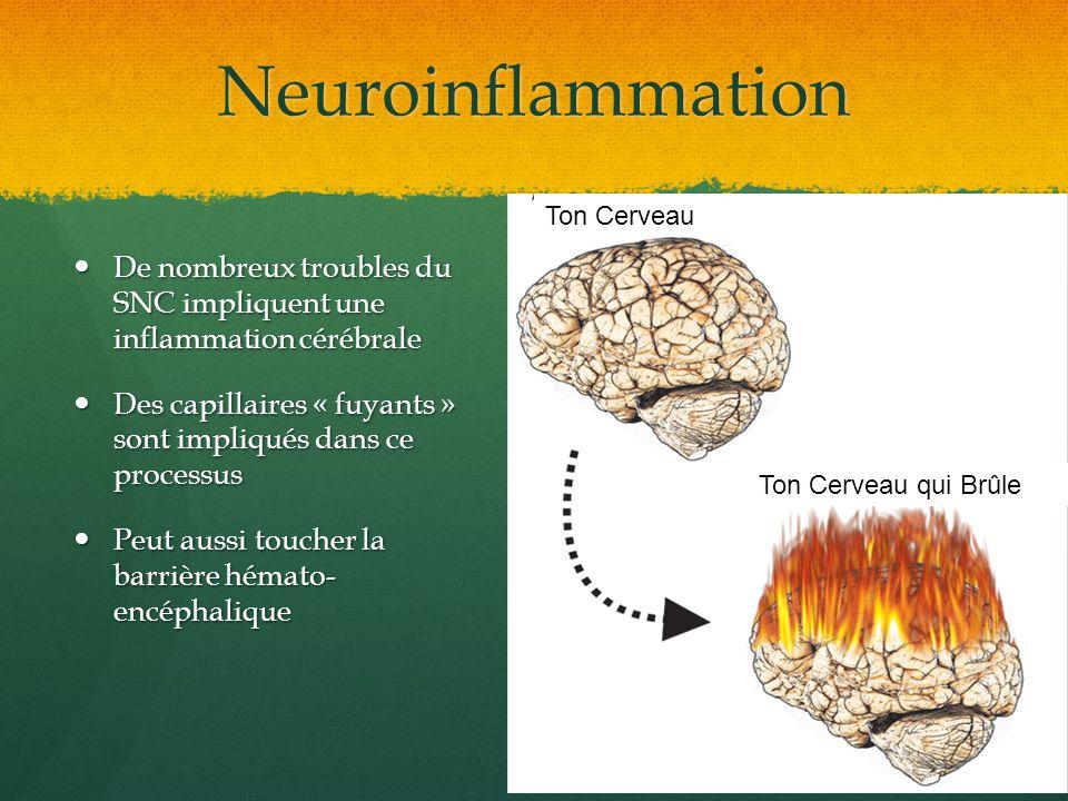 Neuroinflammation De nombreux troubles du SNC impliquent une inflammation cérébrale De nombreux troubles du SNC impliquent une inflammation cérébrale