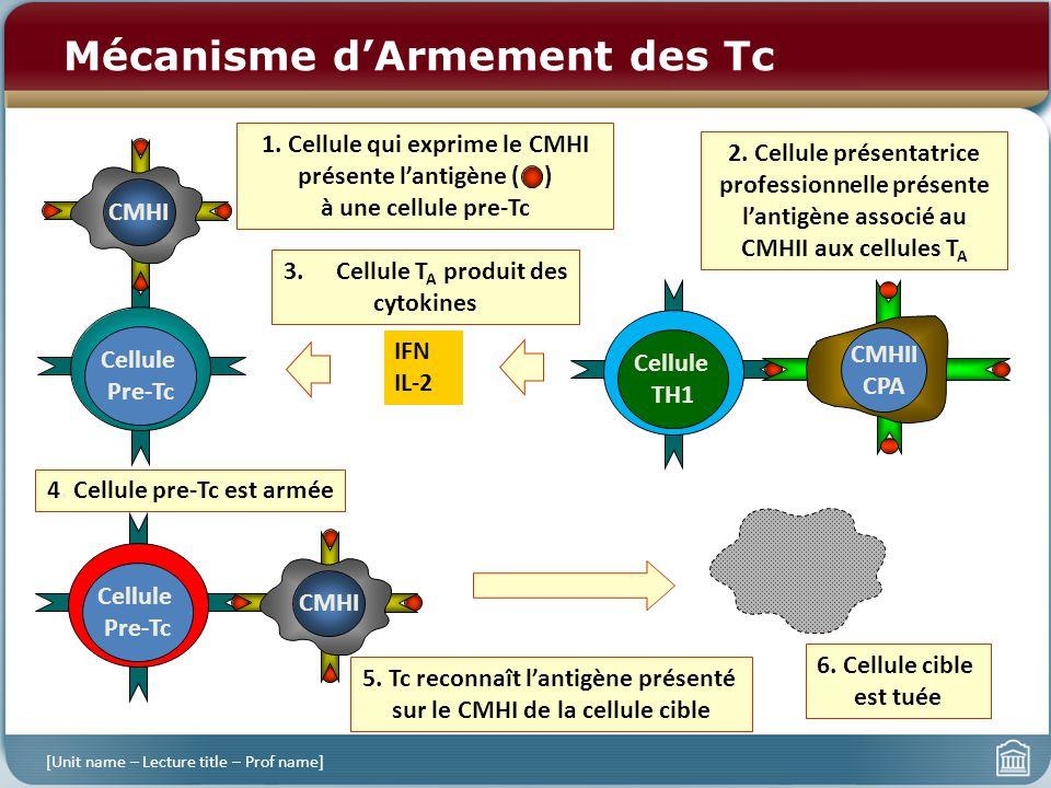 Mécanisme dArmement des Tc [Unit name – Lecture title – Prof name] Cellule Pre-Tc CMHI 1. Cellule qui exprime le CMHI présente lantigène ( ) à une cel