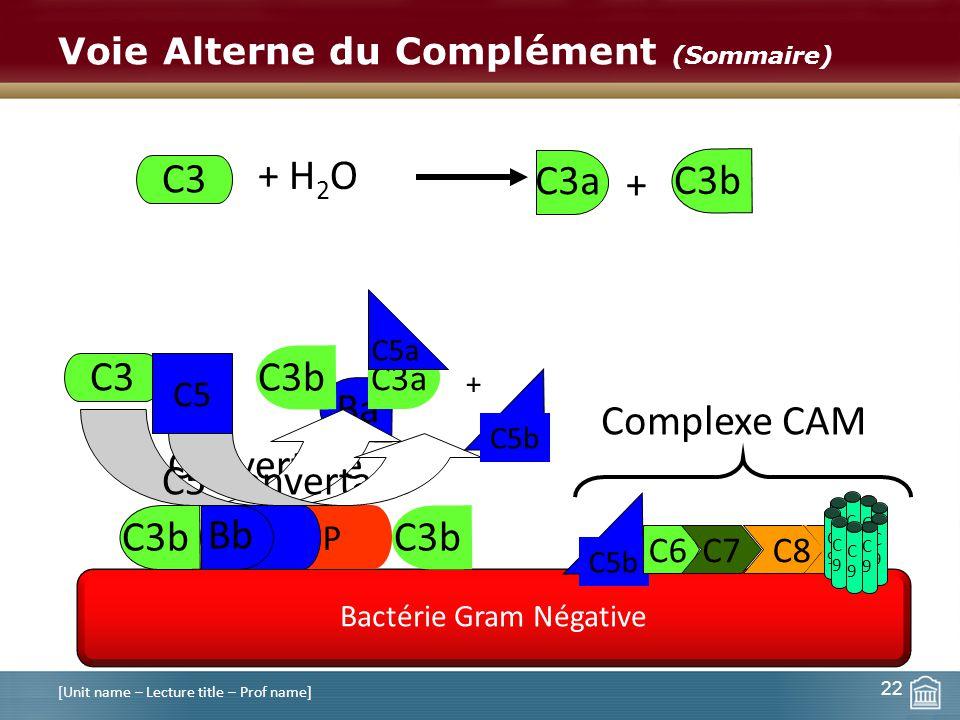 Voie Alterne du Complément (Sommaire) [Unit name – Lecture title – Prof name] C9C9 C9C9 22 Bactérie Gram Négative C3 + H 2 O + C3b Ba P B Bb C3 Conver