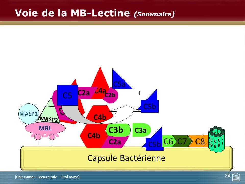Voie de la MB-Lectine (Sommaire) [Unit name – Lecture title – Prof name] C9C9 C9C9 26 Capsule Bactérienne C5b C6C7 C8 C9C9 C9C9 C9C9 C9C9 C9C9 C9C9 C9