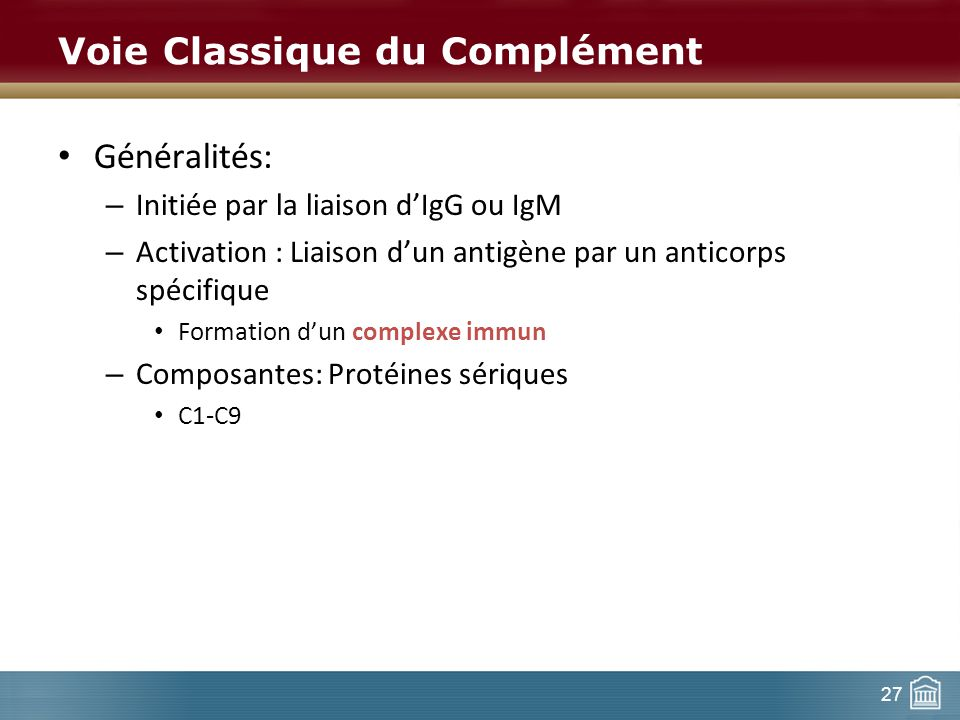 27 Voie Classique du Complément Généralités: – Initiée par la liaison dIgG ou IgM – Activation : Liaison dun antigène par un anticorps spécifique Form