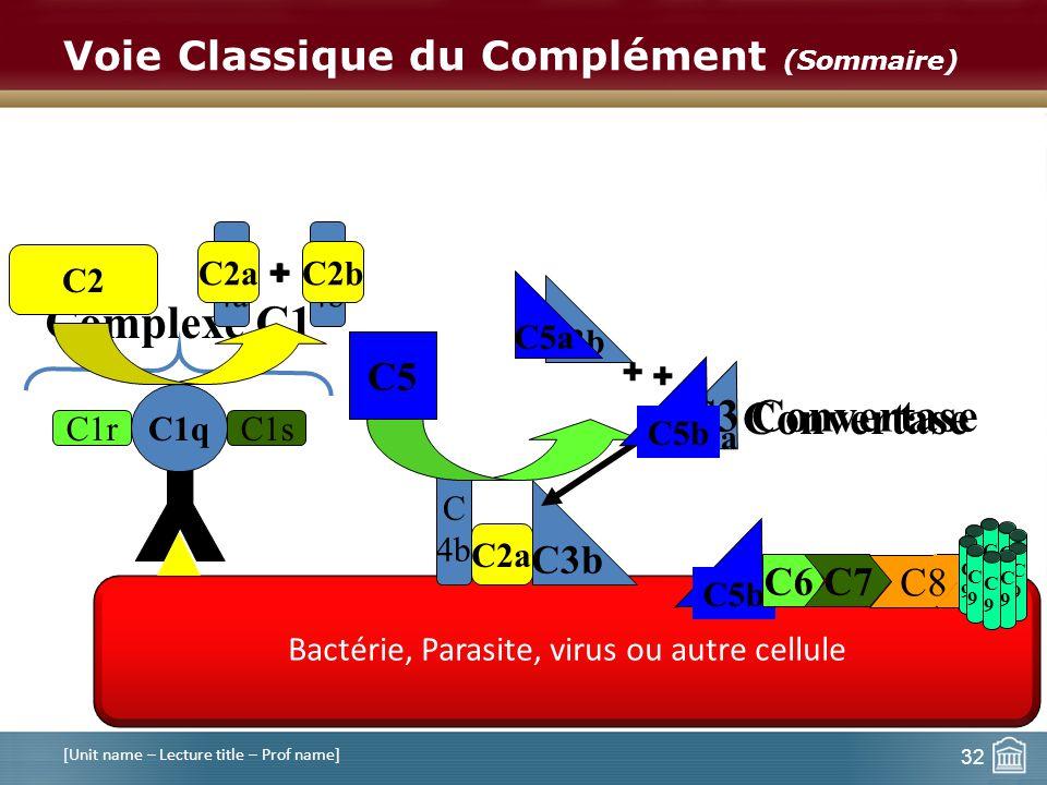 Bactérie, Parasite, virus ou autre cellule Voie Classique du Complément (Sommaire) [Unit name – Lecture title – Prof name] C1q C1rC1s Complexe C1 C4 C