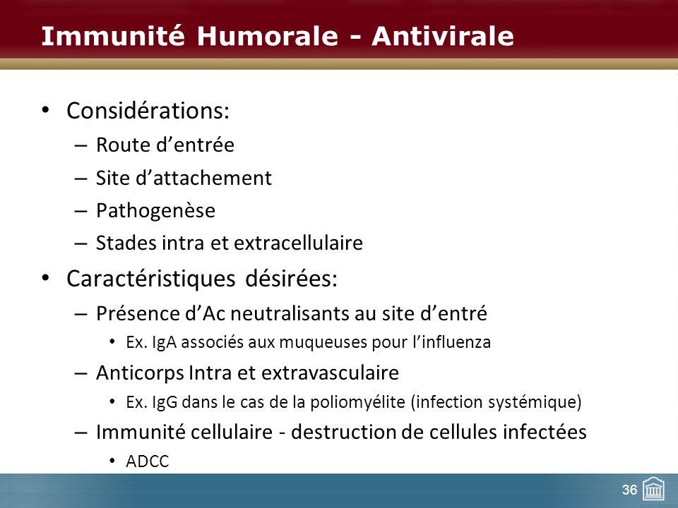36 Immunité Humorale - Antivirale Considérations: – Route dentrée – Site dattachement – Pathogenèse – Stades intra et extracellulaire Caractéristiques