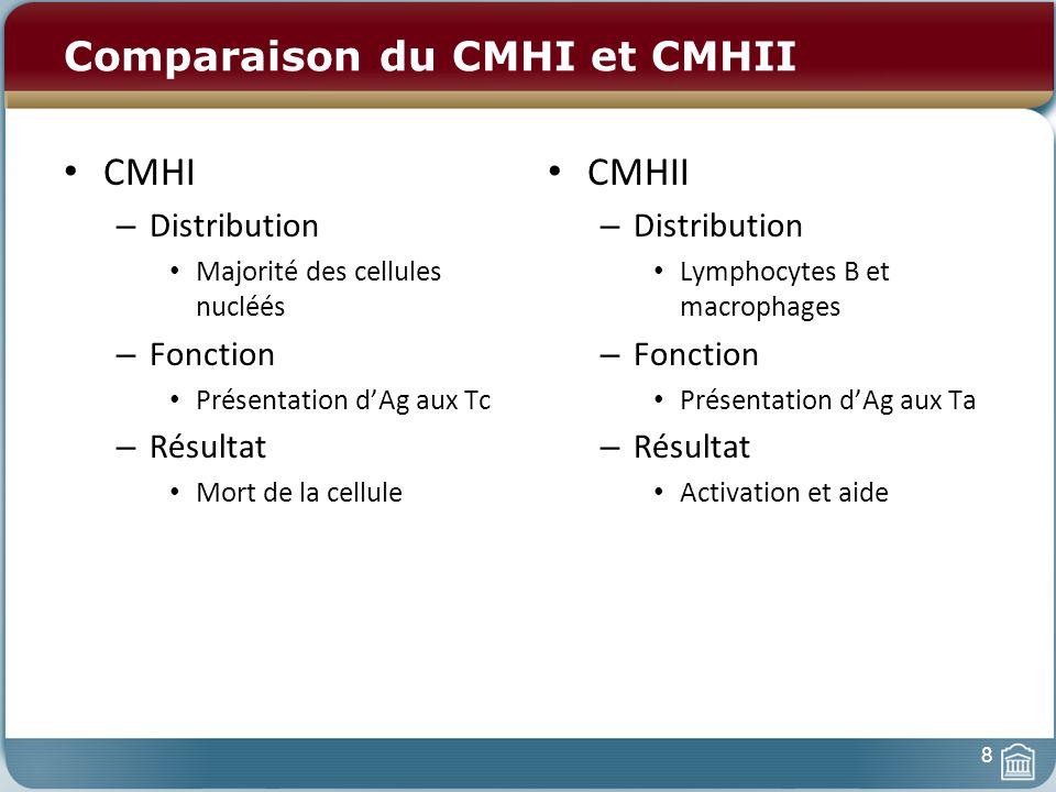 Comparaison du CMHI et CMHII CMHI – Distribution Majorité des cellules nucléés – Fonction Présentation dAg aux Tc – Résultat Mort de la cellule CMHII