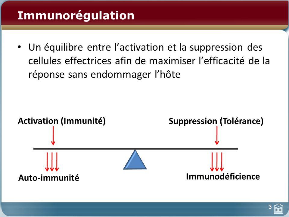 Immunorégulation Un équilibre entre lactivation et la suppression des cellules effectrices afin de maximiser lefficacité de la réponse sans endommager lhôte Activation (Immunité) Suppression (Tolérance) Auto-immunité Immunodéficience 3