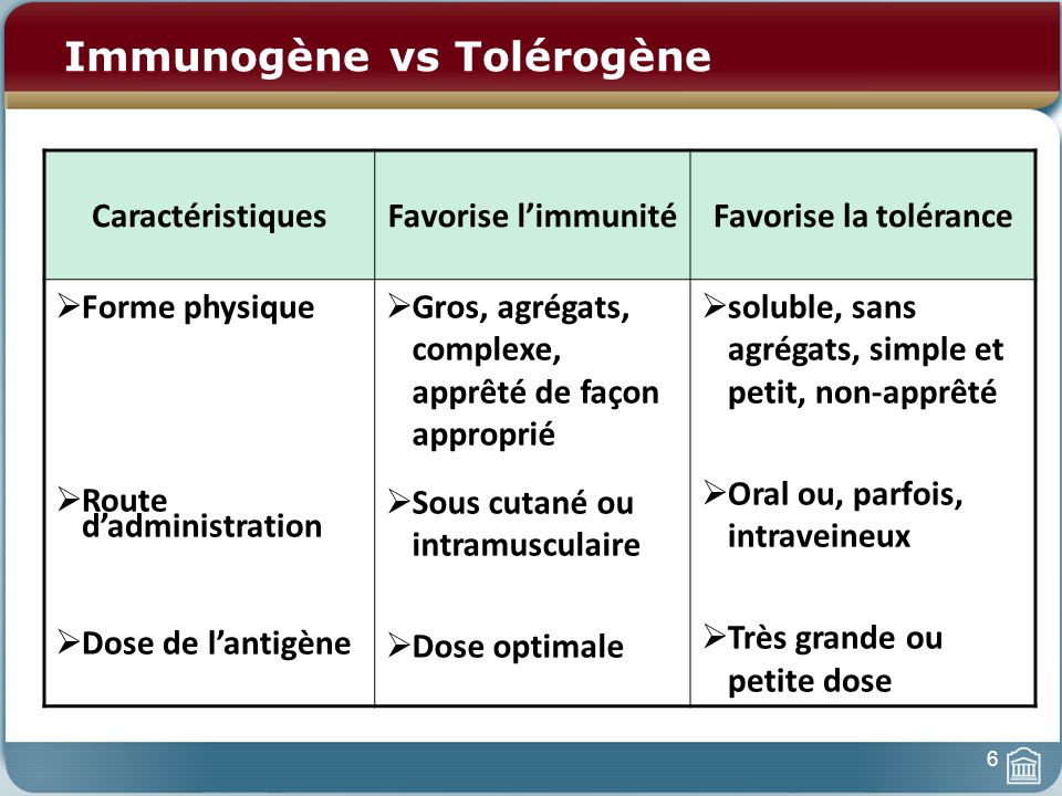 Polarisation des Lymphocytes T CD4+ CPA T Naïve CD4 IL-12 IL-4 TH1TH2 IFN- IL-2 TNF IL-4 IL-5 IL-10 IL-13 + + Boucles rétroactives 27