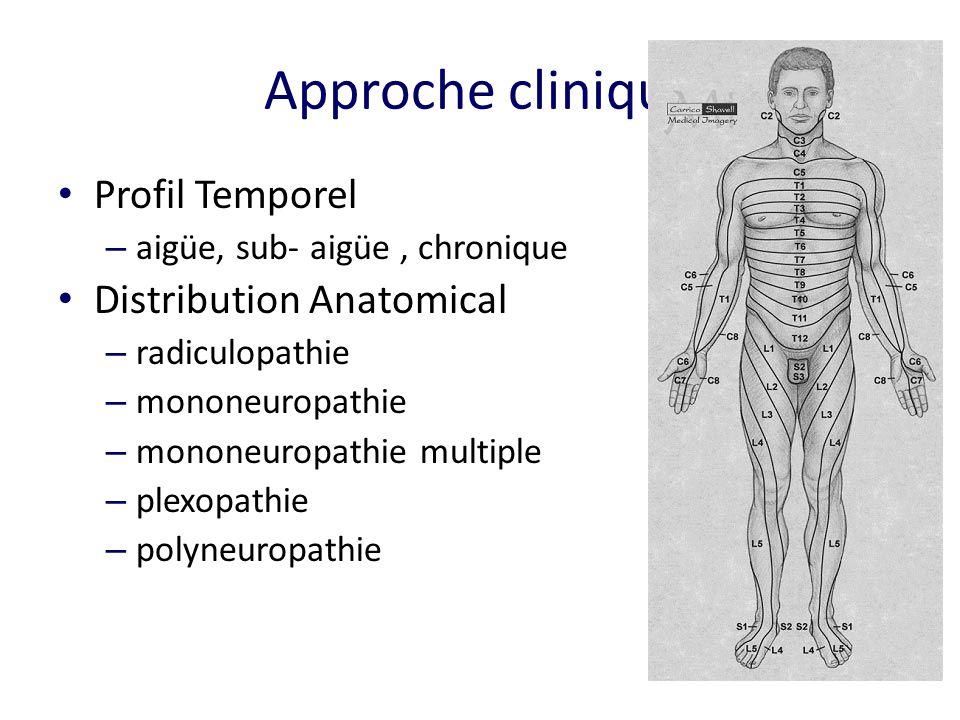 Approche clinique Profil Temporel – aigüe, sub- aigüe, chronique Distribution Anatomical – radiculopathie – mononeuropathie – mononeuropathie multiple – plexopathie – polyneuropathie