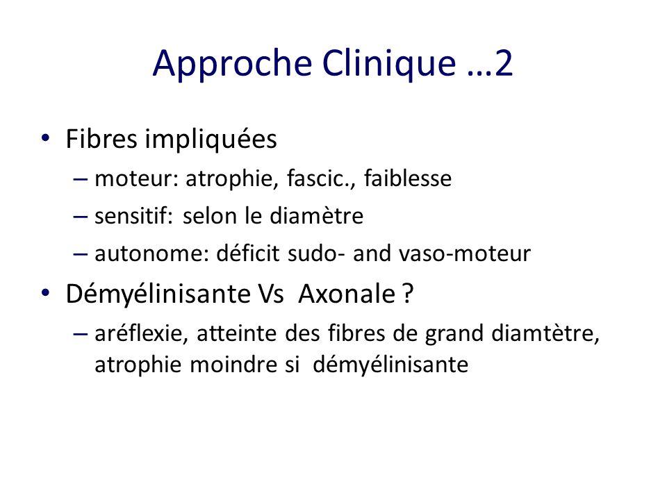 Approche Clinique …2 Fibres impliquées – moteur: atrophie, fascic., faiblesse – sensitif: selon le diamètre – autonome: déficit sudo- and vaso-moteur Démyélinisante Vs Axonale .